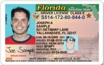 Florida Drivers License Gold Star Real ID
